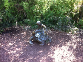 I didn't manage to take a picture of an actual animal, but this statue reminded me of how we used to be able to ride the tortoise, when I was a kid.